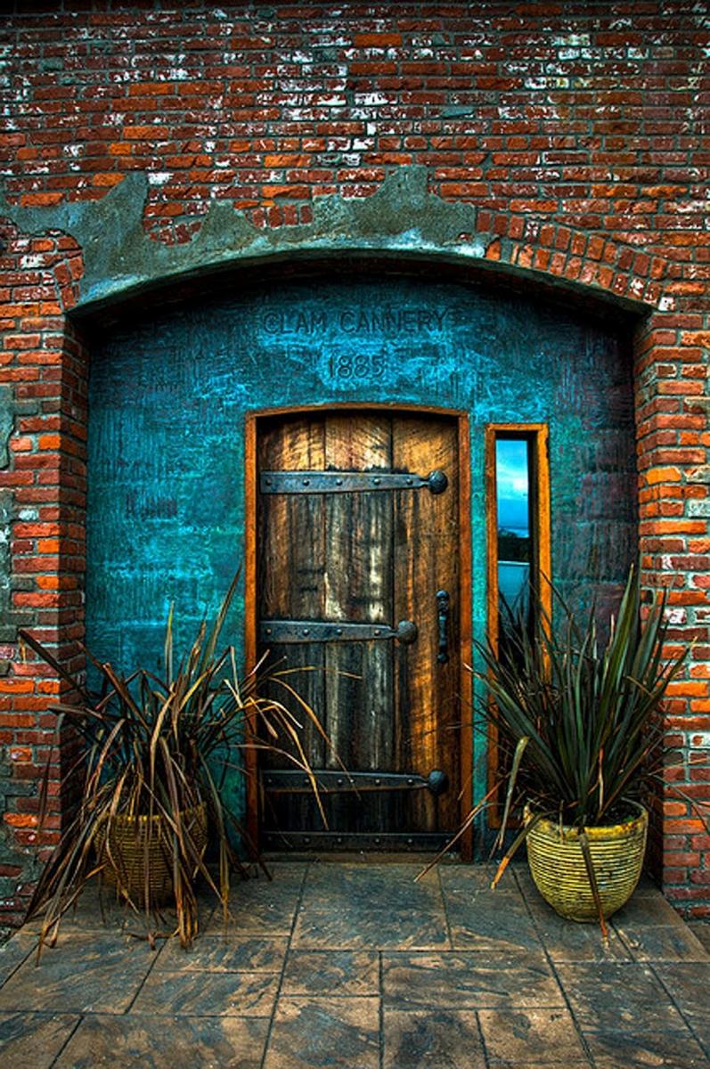 Colorful doors to adventure shadow dog designs for Clamshell door